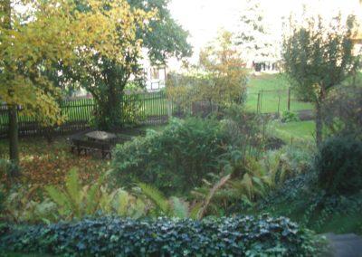 R.-Luxemburg-Str. 17 - Garten
